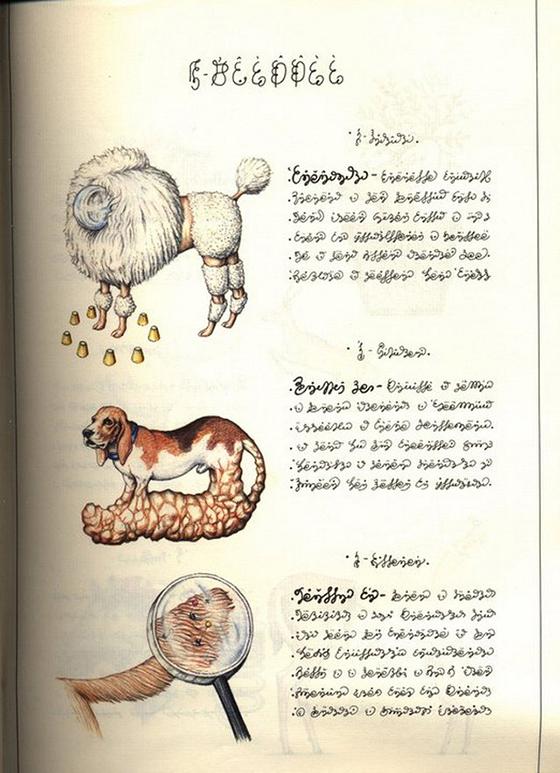 Codex Seraphinianus, o livro ilustrado mais estranho do mundo